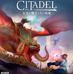 堡垒:火焰之炼 中文绿色免安装版